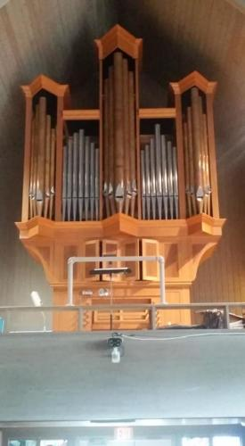 Leek organ
