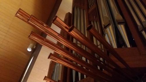 Organ 2