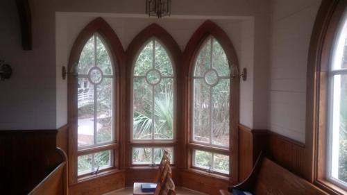 Palms and windows