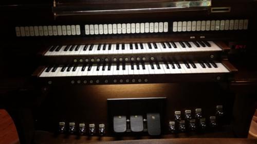 organ (1) (1)